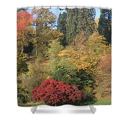 Shower Curtain featuring the photograph Autumn In Baden Baden by Travel Pics