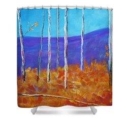Autumn In Cloudcroft Shower Curtain
