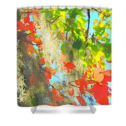 Autumn In Dixie  Shower Curtain