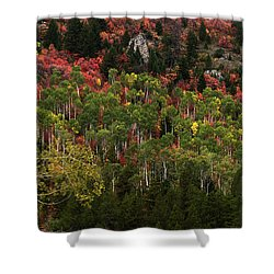 Autumn In Idaho Shower Curtain by Yeates Photography