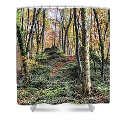 Autumn In Jordan Beech Wood Shower Curtain