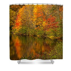 Autumn In Monroe Shower Curtain by Karol Livote