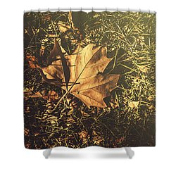 Shower Curtain featuring the photograph Autumn In Narrandera by Jorgo Photography - Wall Art Gallery