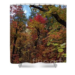 Shower Curtain featuring the photograph Autumn In Sedona by Frank Stallone