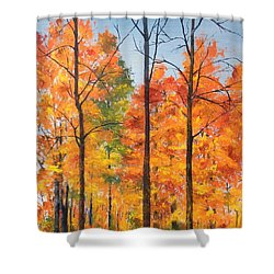 Shower Curtain featuring the painting Autumn In South Wales Ny by Ellen Canfield