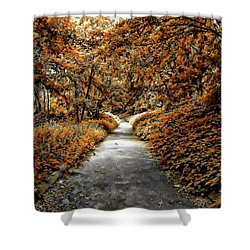 Autumn In Stamford Shower Curtain