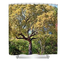 Autumn In Summer Shower Curtain by Joan Bertucci