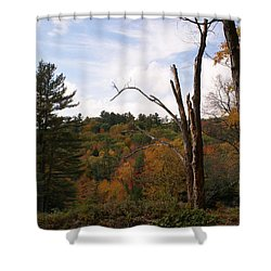 Autumn In The Hills Shower Curtain
