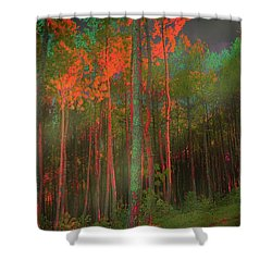 Autumn In The Magic Forest Shower Curtain by Mimulux patricia no No