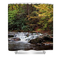 Autumn In The Smokies Shower Curtain by Andrew Soundarajan