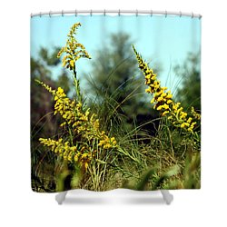 Autumn In The Wind Shower Curtain by Debra Forand