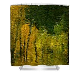 Autumn In Truckee Shower Curtain by Donna Blackhall