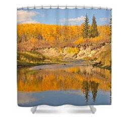 Autumn In Whitemud Ravine Shower Curtain by Jim Sauchyn