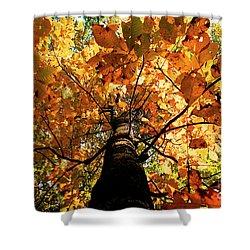 Autumn Is Glorious Shower Curtain