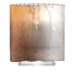 Autumn Iv Shower Curtain