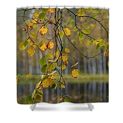Autumn  Shower Curtain by Jouko Lehto