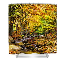 Autumn Landscape Shower Curtain by Evgeni Dinev