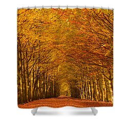 Autumn Lane In An Orange Forest Shower Curtain