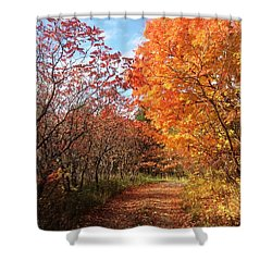 Shower Curtain featuring the photograph Autumn Lane by Pat Purdy