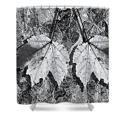 Autumn Leaf Abstract In Black And White Shower Curtain