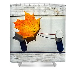 Shower Curtain featuring the photograph Autumn Leaf On Pegs by Gary Slawsky