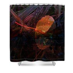 Shower Curtain featuring the digital art Autumn Leaf by Stuart Turnbull
