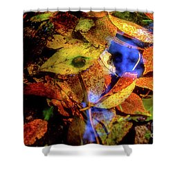 Autumn Leaf Shower Curtain by Tatsuya Atarashi