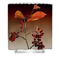 Shower Curtain featuring the photograph Autumn Leafs And Red Berries by David French