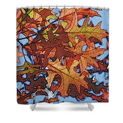 Autumn Leaves 17 - Variation  2 Shower Curtain by Jean Bernard Roussilhe