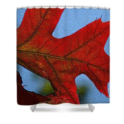 Autumn Leaves 18 Shower Curtain by Jean Bernard Roussilhe