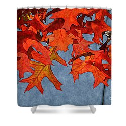 Autumn Leaves 19 Shower Curtain by Jean Bernard Roussilhe