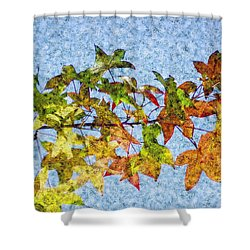 Shower Curtain featuring the photograph Autumn Leaves 2 by Jean Bernard Roussilhe