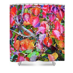 Autumn Leaves And Buds Shower Curtain