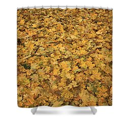Autumn Leaves Canvas Shower Curtain by Carol Groenen