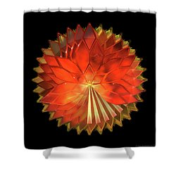 Autumn Leaves - Composition 2 Shower Curtain