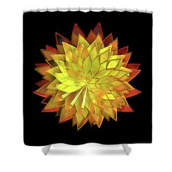 Autumn Leaves - Composition 4 Shower Curtain