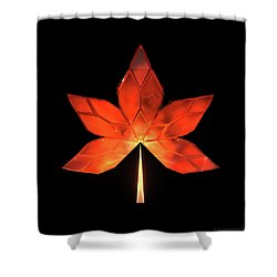 Autumn Leaves - Frame 320 Shower Curtain