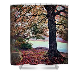 Autumn Leaves On The Blue Ridge Parkway Ap Shower Curtain by Dan Carmichael