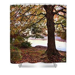 Autumn Leaves On The Blue Ridge Parkway Shower Curtain by Dan Carmichael