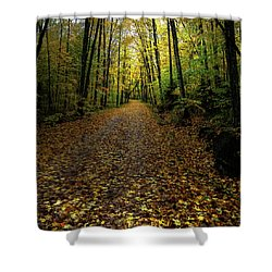 Shower Curtain featuring the photograph Autumn Leaves On The Trail by David Patterson