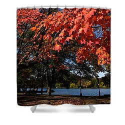 Autumn Leaves Prospect Park Brooklyn Shower Curtain by Diane Lent