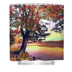 Autumn Leaves Tree At Blue Ridge Lake Ap Shower Curtain