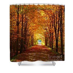 Autumn Light And Leaf Painting Shower Curtain
