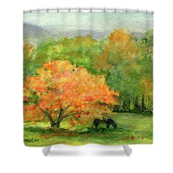 Autumn Maple With Horses Grazing Shower Curtain