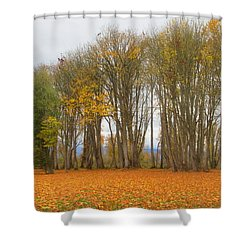 Autumn Maples Shower Curtain