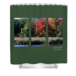 Autumn Marsh Through A Window Shower Curtain