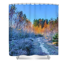 Shower Curtain featuring the photograph Autumn Meets Winter by Dmytro Korol