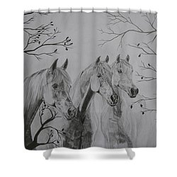 Autumn Shower Curtain by Melita Safran