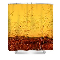Shower Curtain featuring the photograph Autumn by Milena Ilieva