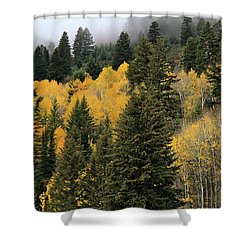 Autumn Mist, Owyhee Mountains Shower Curtain
